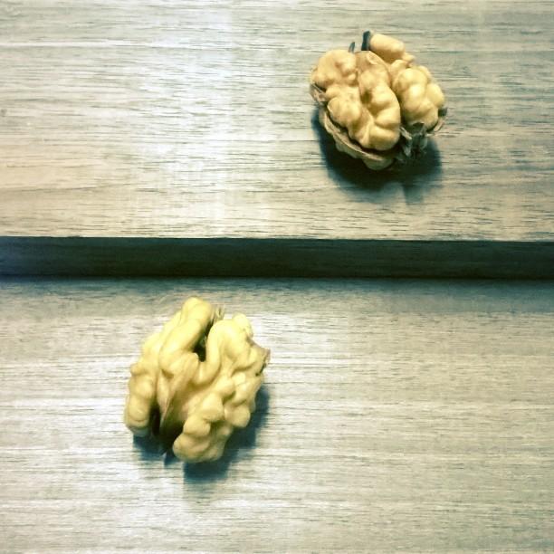 Brains. #walnuts #photographyel #phototweet